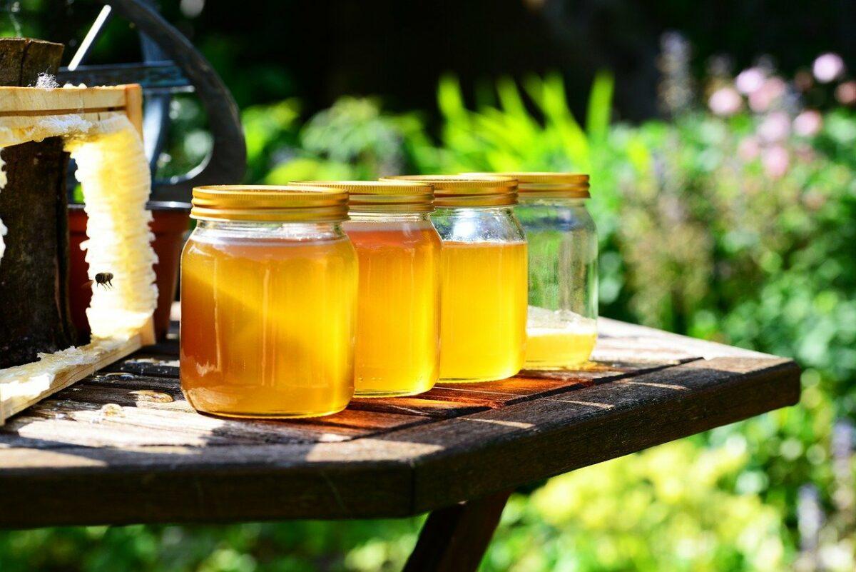 Miel et ruches